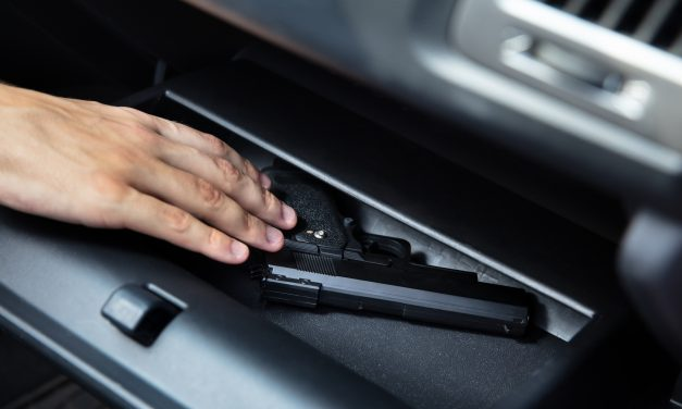 Best Handgun Safe for Car – Prepper's Guide and Reviews