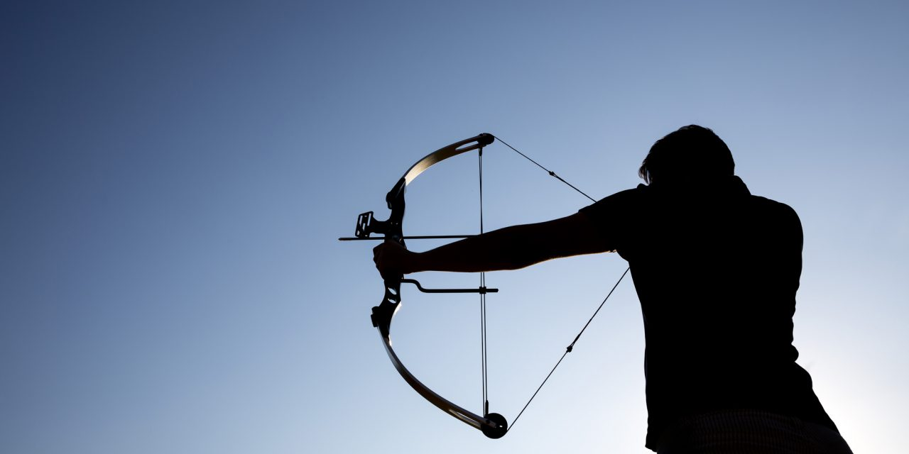 Best Hunting Arrows for Compound Bow – Hunter's Guide