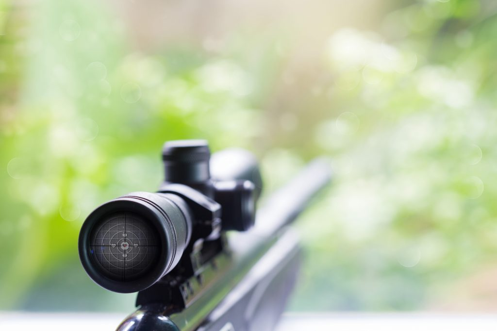 best muzzle loader scope