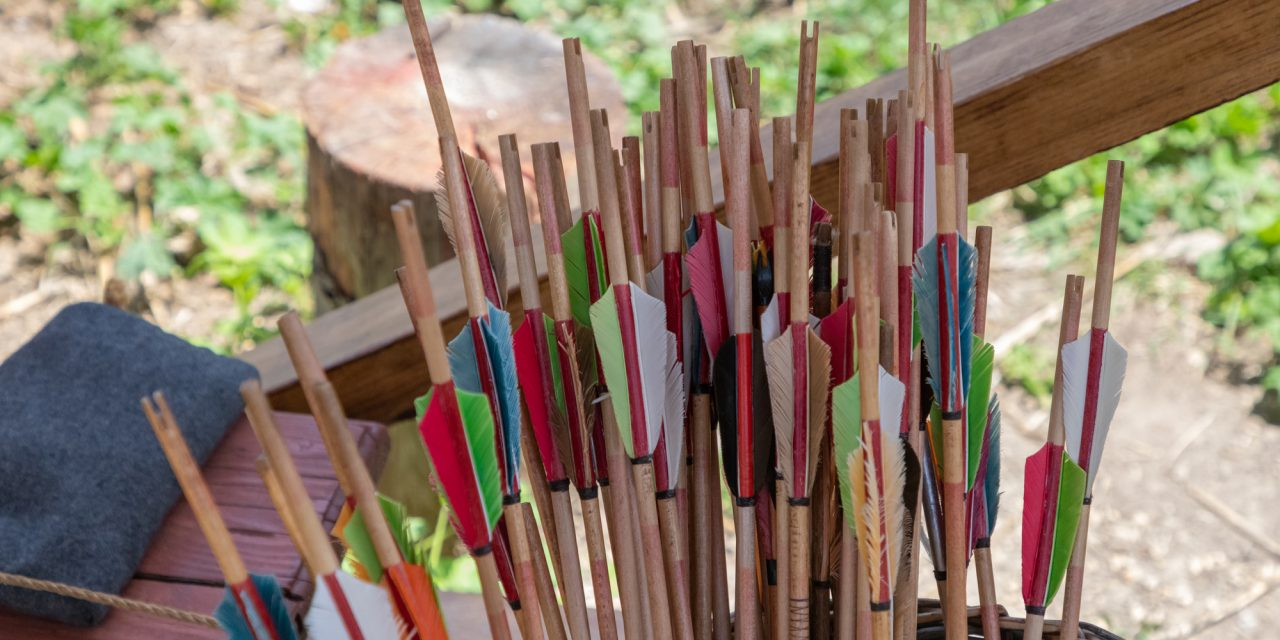 All You Need to Know About Types of Arrows [Survivalist's Guide]