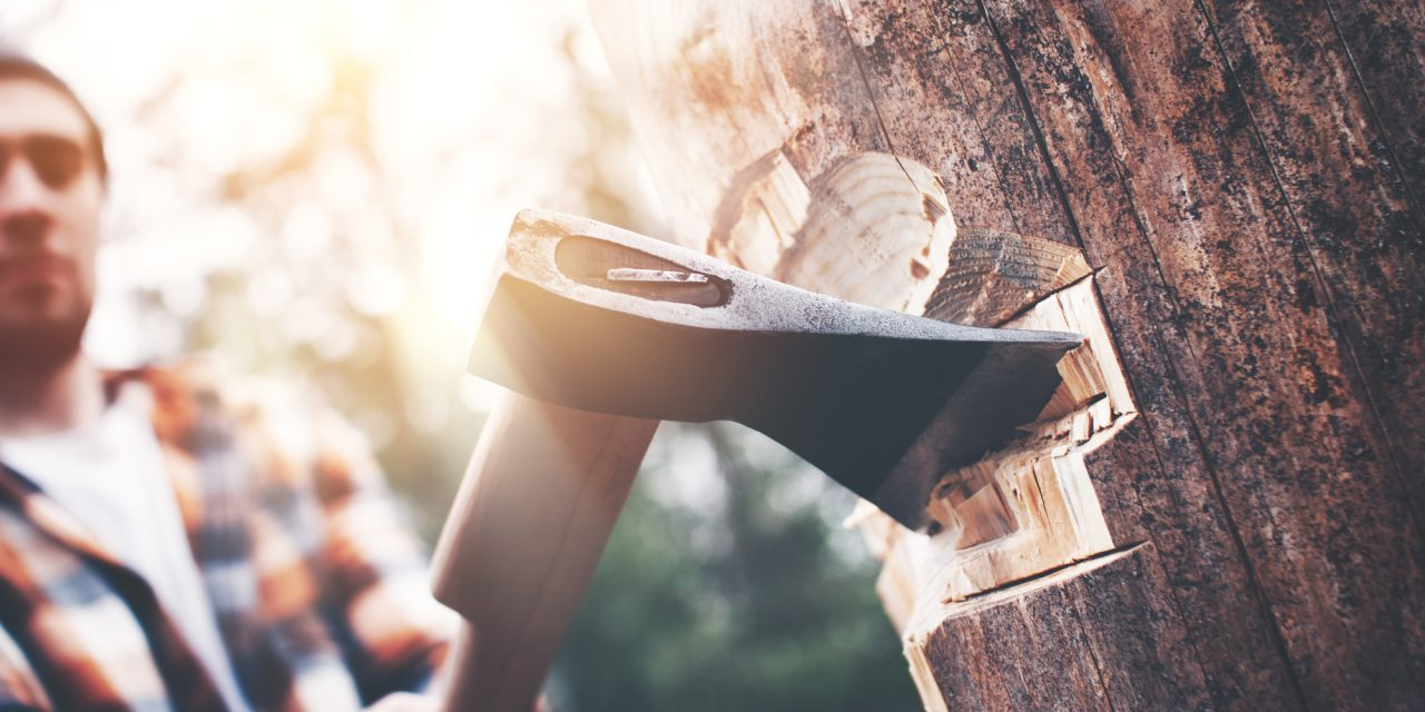 Best Survival Axe and Hatchet [Best Picks Tested and Reviewed]