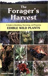 edible plants in wilderness book