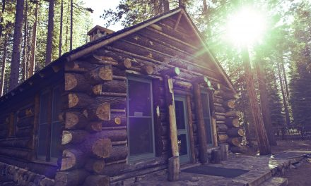 Beginner's Guide to Off Grid Survival – Things to Know BEFORE You Try It
