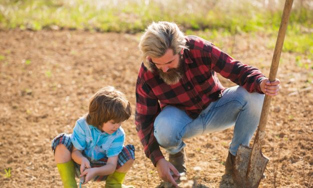 What Is Homesteading and Why You Should Consider It Now