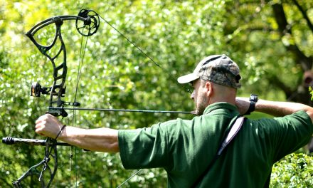 15 Parts of a Compound Bow – The Beginner Survivalist's Guide