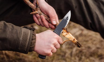 11 Myths and Facts About Bushcraft