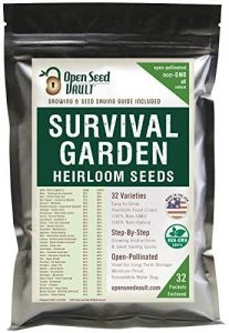 seeds to stockpile for survival