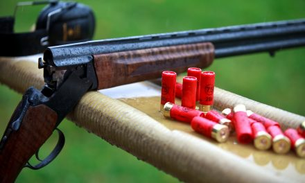 How to Choose the Best Survival Shotgun – Beginner's Guide